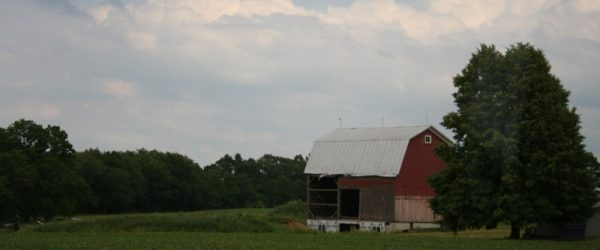 2017-06-17-middleville-the-broad-side-of-a-barn-800x570